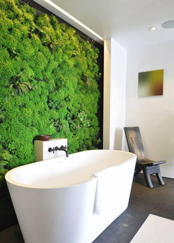 mur en plante