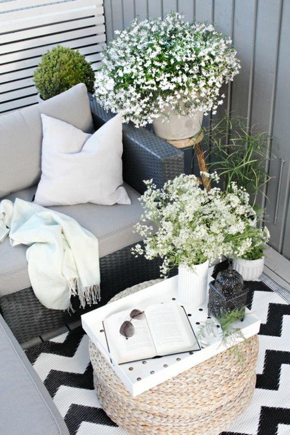 fleur blanche terrasse