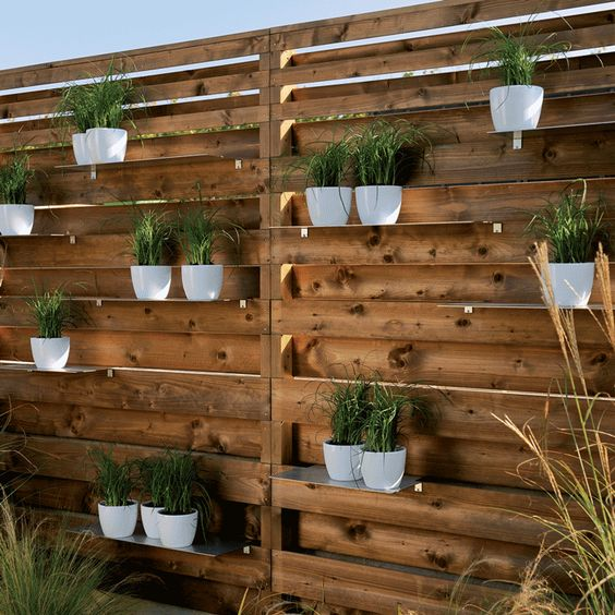 palissade avec plantes