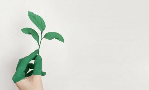 6 façons d'économiser de la peinture tout en aidant l'environnement