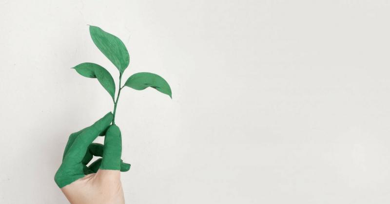 Économiser de la peinture tout en aidant l'environnement