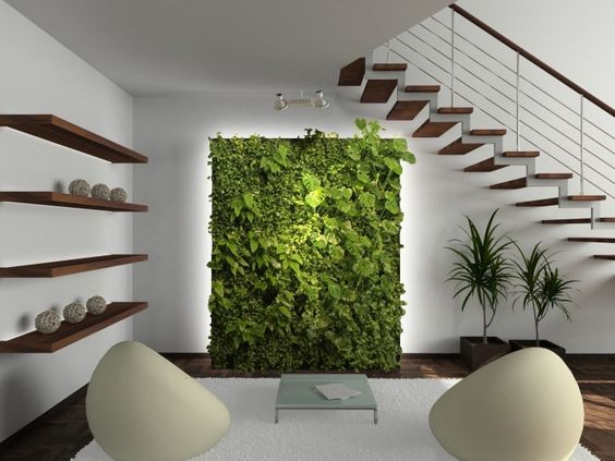 mur vegetal salon