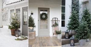 planter un sapin comme décoration de Noël extérieure