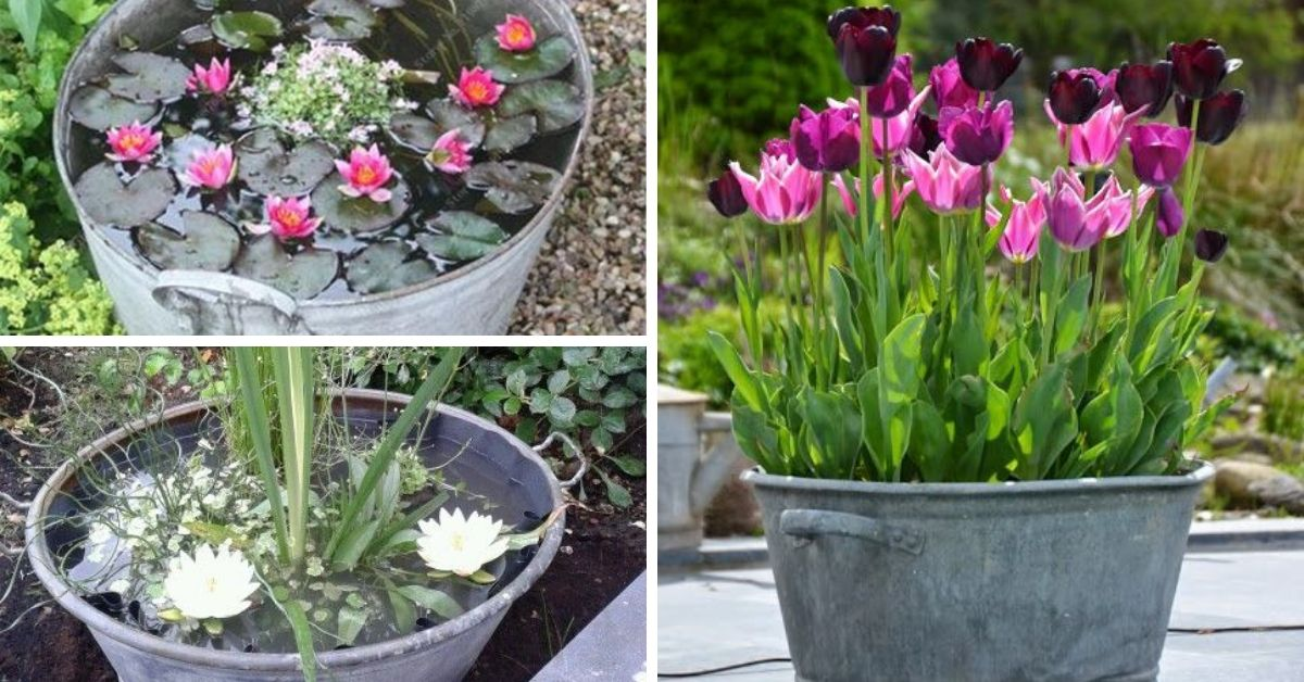 bassine en metal avec fleurs