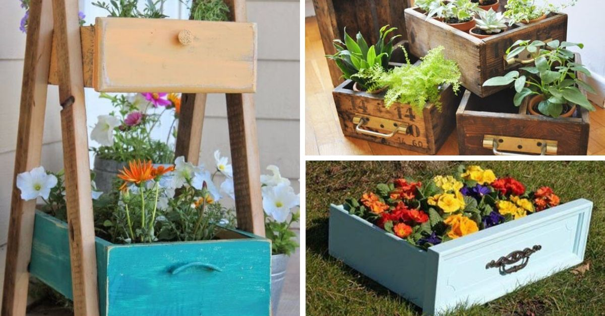 tiroir transforme en pot a fleurs