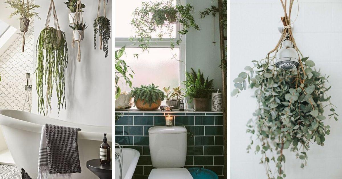 verdure dans salle de bain