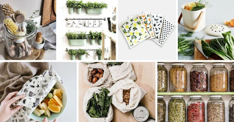 idees pour cuisine zero dechet