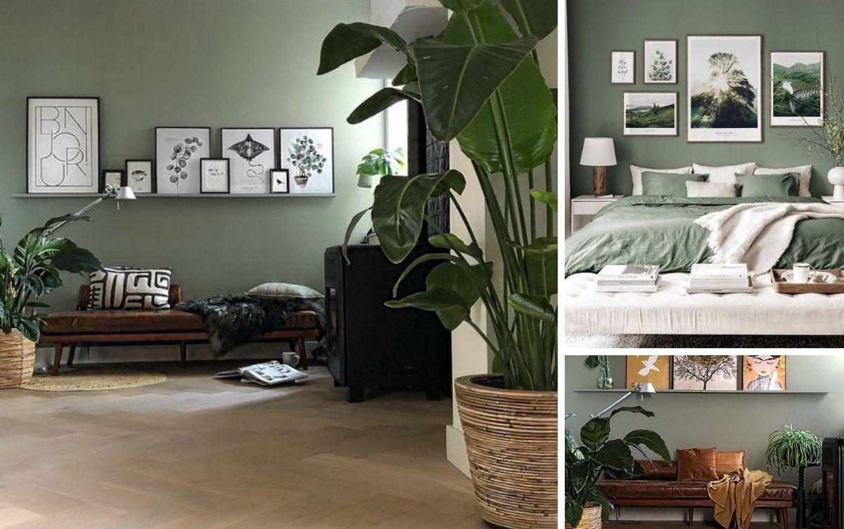 mur peinture verte ambiance relaxe